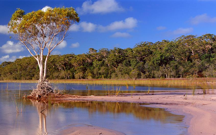 Lake on Fraser Island, photo by Steve Nowakowski