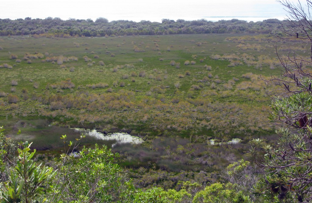 View from escarpment to the sea. The 18 Miles swamp wetland has a huge diversity of environments
